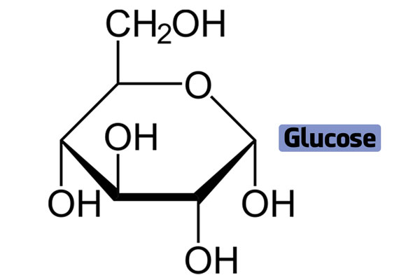 Glucose là gì